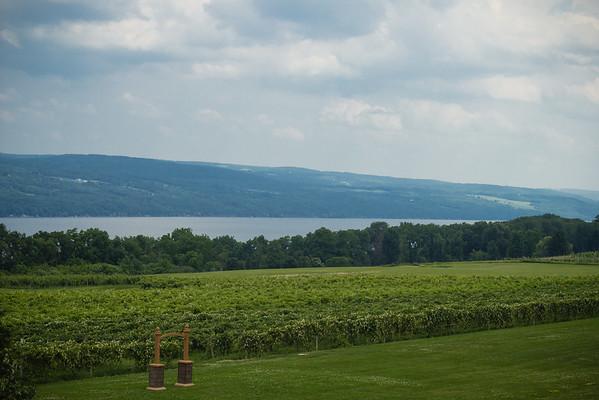Vineyards at Veraisons/Glenora