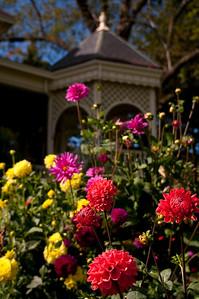 flowers bloom with the breakfast deck beyond.