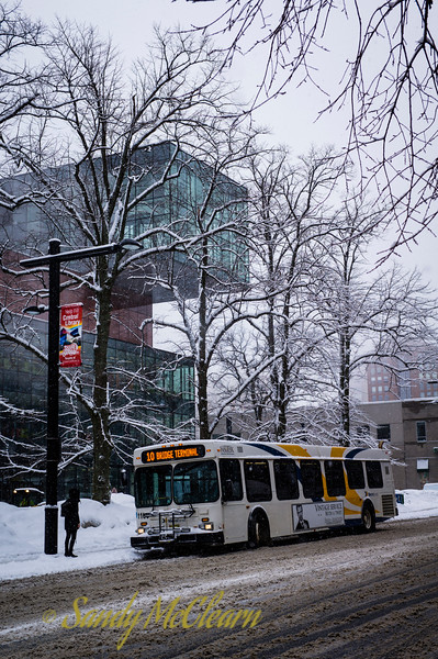 A bus in front of the Halifax Central Library in the snow.