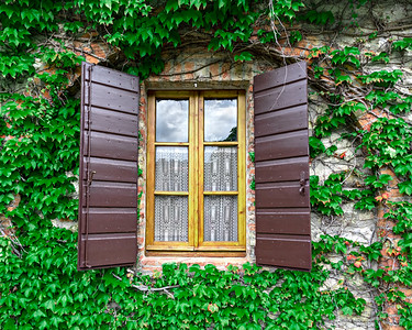 Tuscany window