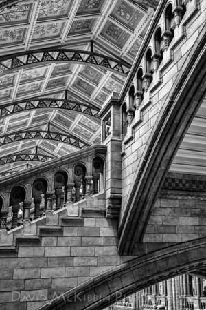 Natural History Museum, M.C. Escher Style