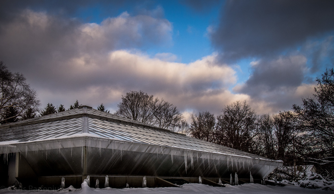 Icy Conservatory