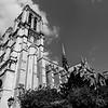 <strong>Notre-Dame de Paris</strong>
