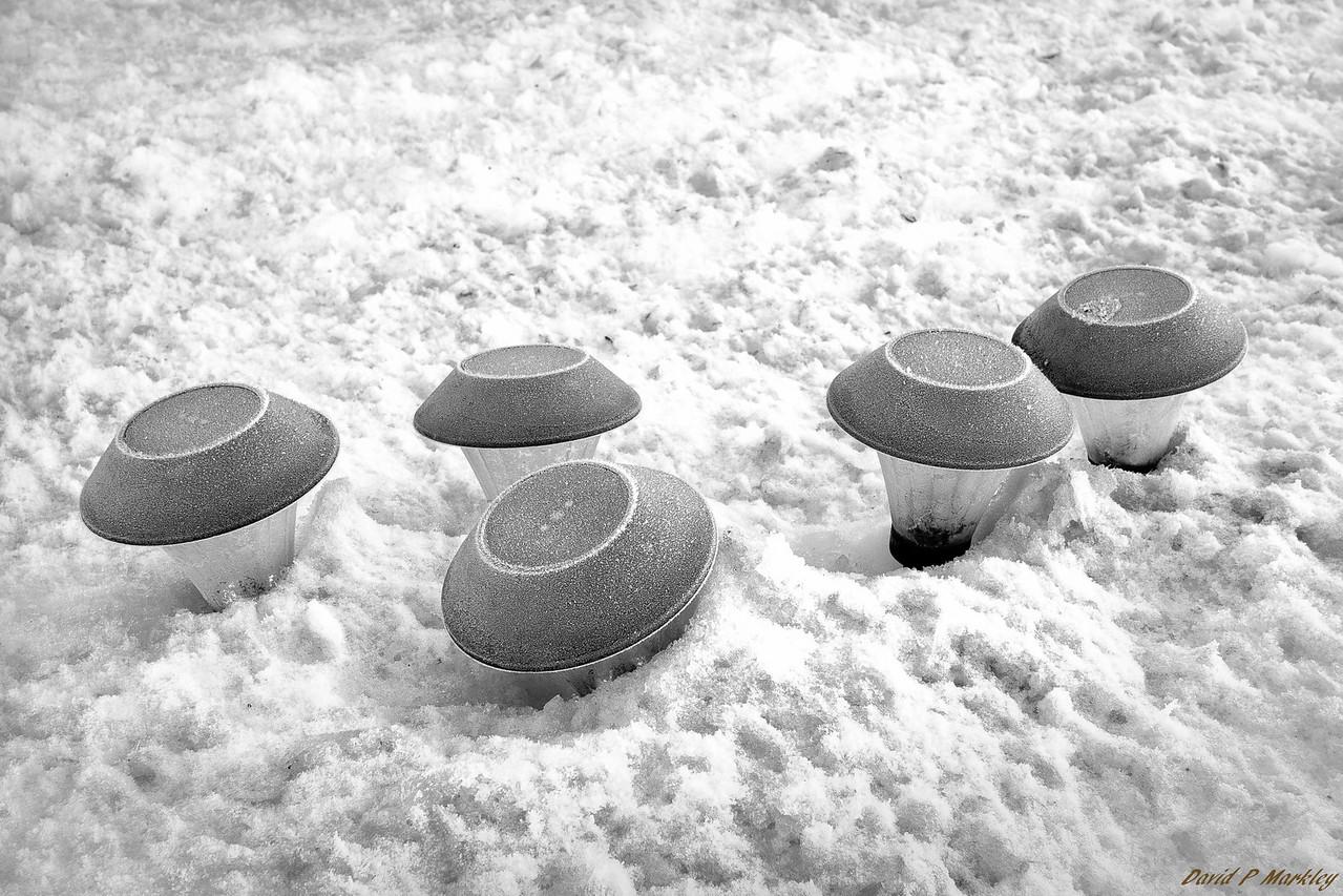 Frozen Lanterns