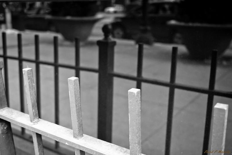 Black & White Fencing