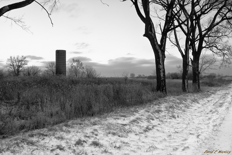 Silo Frost