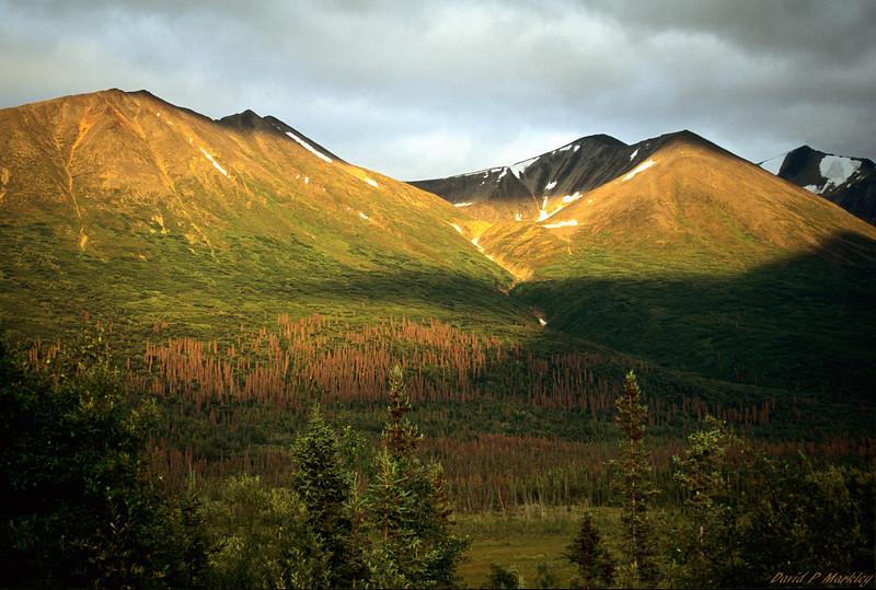 Peaks of Light