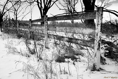 Crooked Fence
