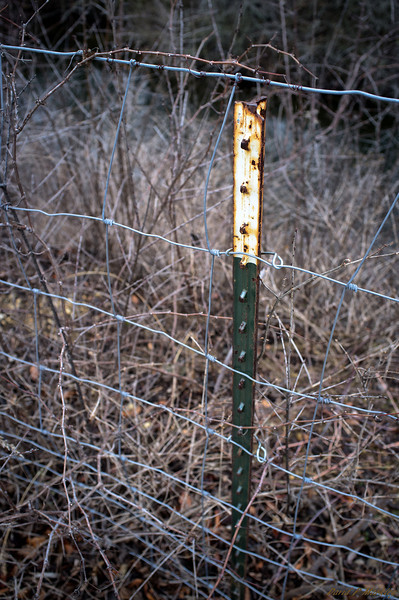Fence Stake