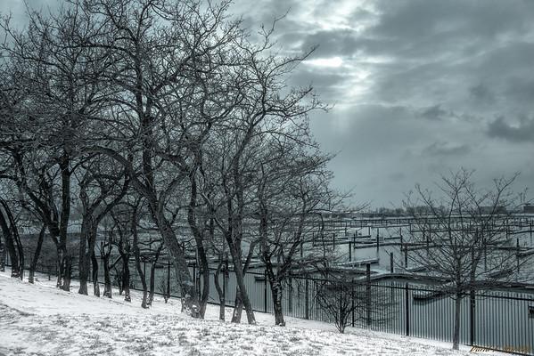 Snowy Dawn