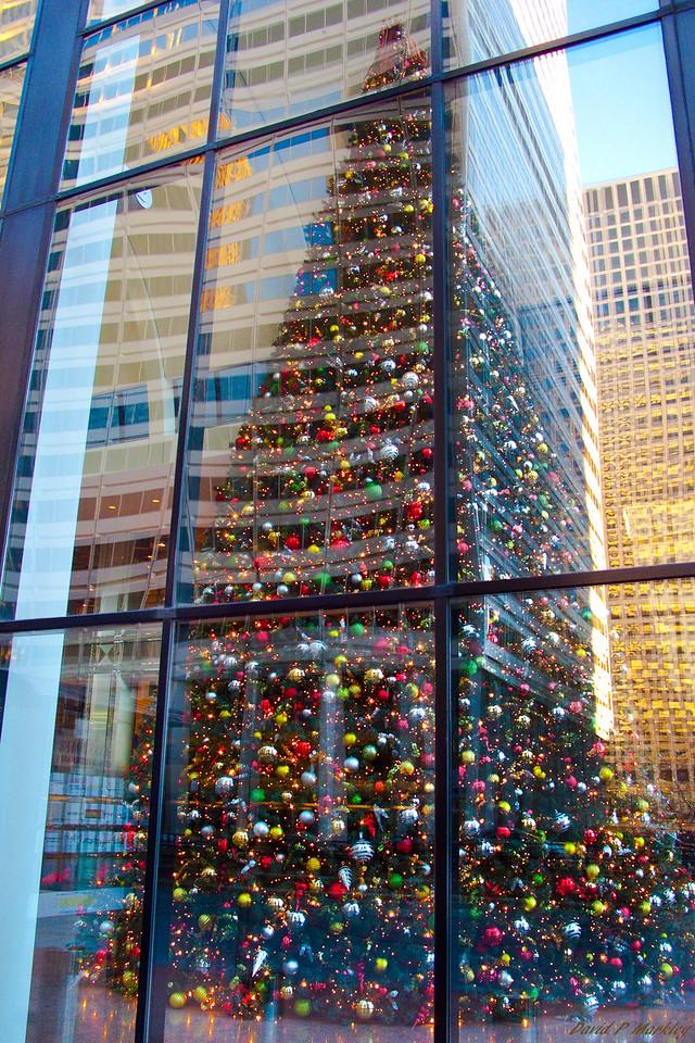 Christmas Reflection