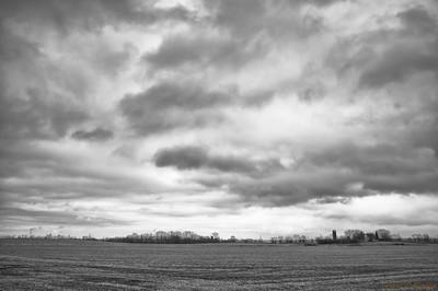 Sky Shades