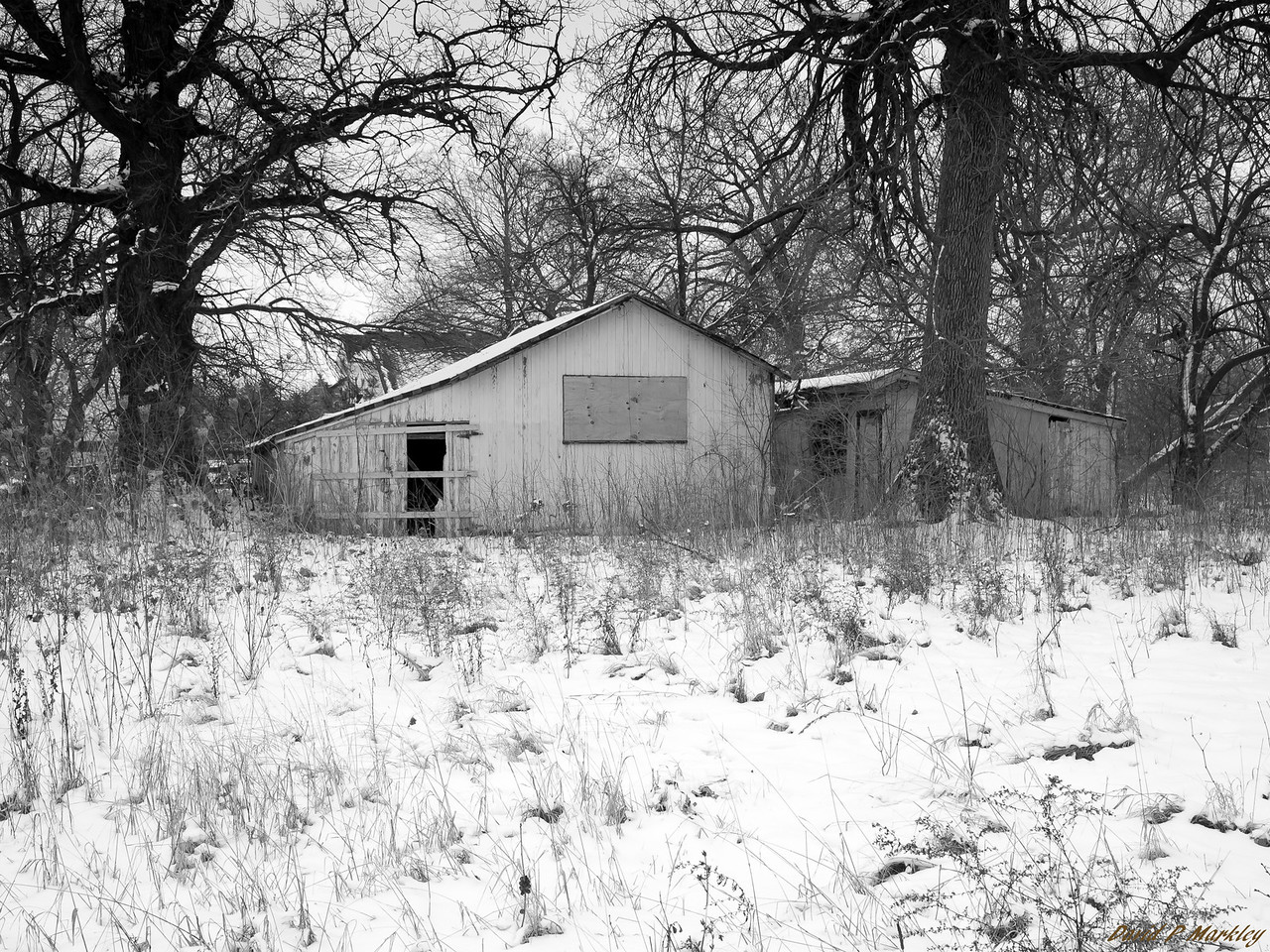 Icy Isolation