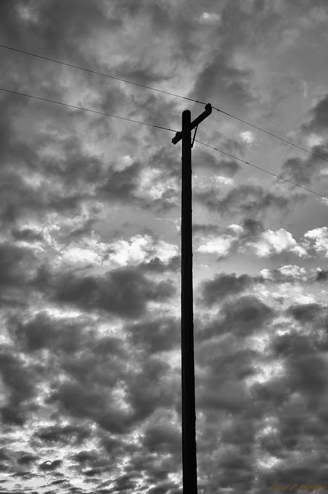 Dark Telephone Pole