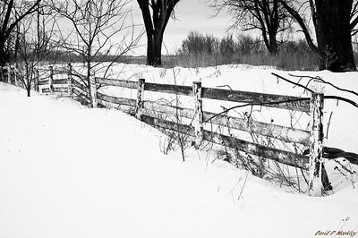Falling Fence