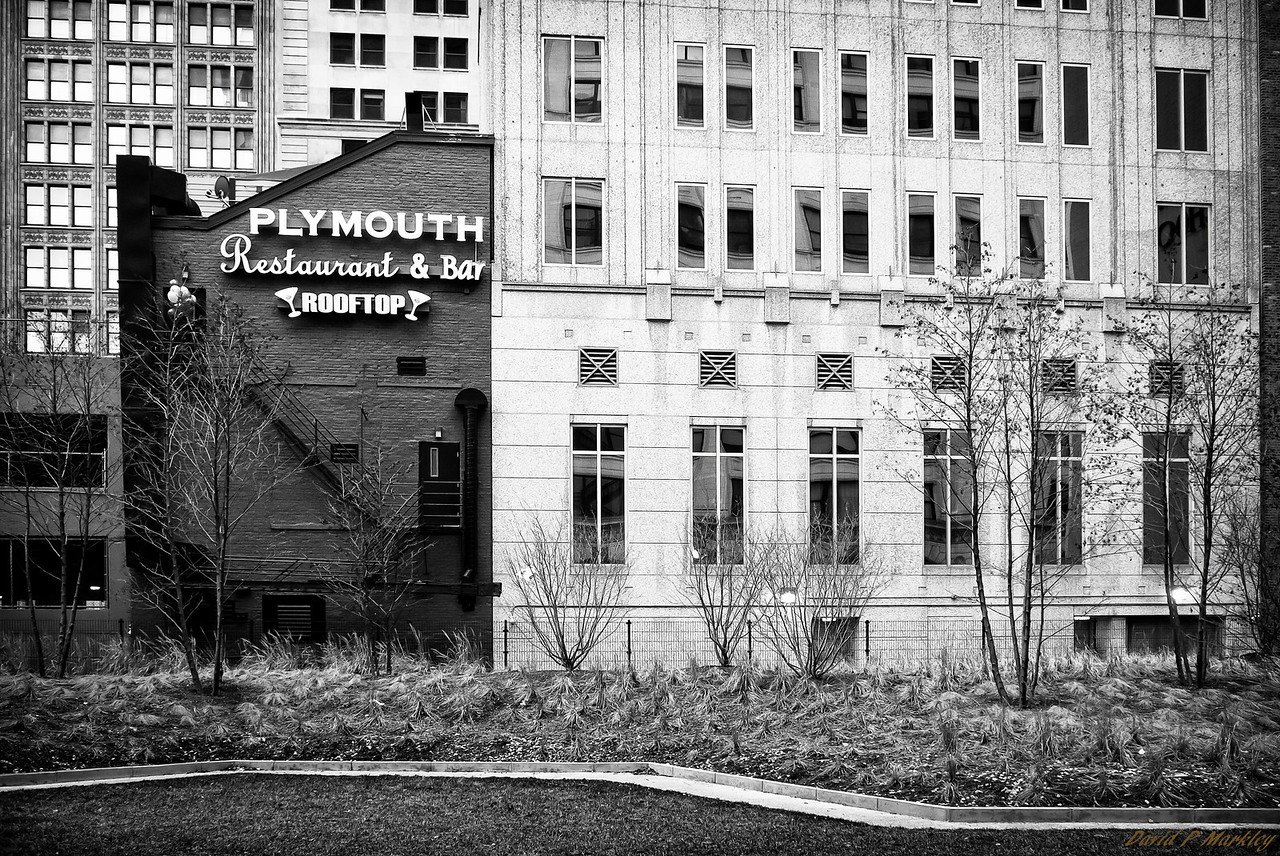 Plymouth Rooftop