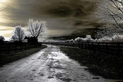 Spooky Path