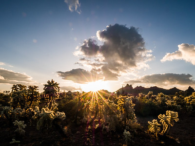 Ascending Sun