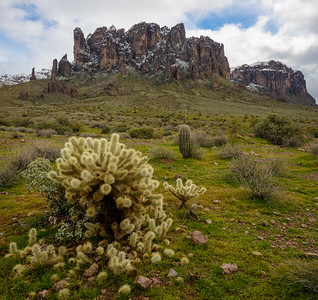 3823 Lost Dutchman State Park
