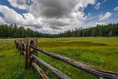 Hannigan Meadow, Arizona