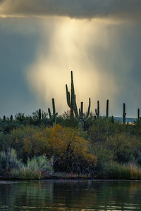 Saguaro Lake Cloudburst, Arizona