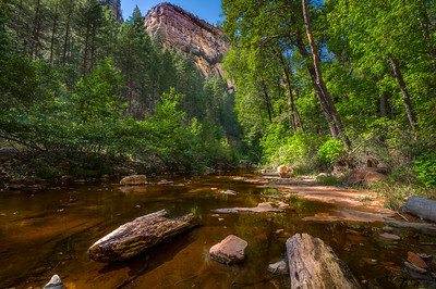 West Fork Canyon, Arizona