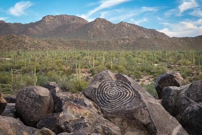 Signal Hill, Saguaro National Park West, Arizona