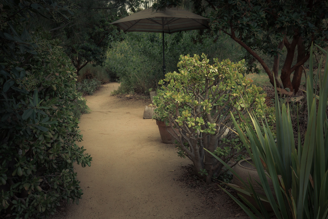 Path leading into Arlington Garden
