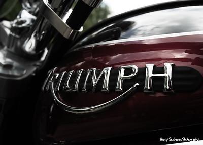 Triumph - Deals Gap NC