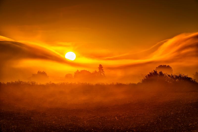 SJB Sunrise Through Swirling Fog