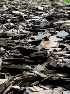 Cavell - Rock Slide