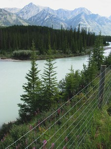 Bow River South