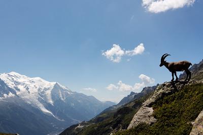 Carte postale du Mont Blanc - Alpes, France, 2009