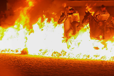 "Horses of fire - Landivisiau (see http://fr.wikipedia.org/wiki/Landivisiau) in Bretagne is the capital of the ""Trait Breton"" or ""Postier Breton"" a very sturdy but elegant horse that was used as a draft horse in the old times for various work including pulling heavy guns or working in coal mines.  The horse market of Landivisiau was very famous and every jear on the Monday following Pentecost (lundi de Pentecote) there is still a horse competition.  For the past two years, a show has been taking place on the previous Saturday reviving the old days."
