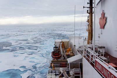 The Amundsen leaving its trace - MALINA cruise, Beaufort Sea, August 2009