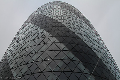 The Gherkin - vertical perspective.