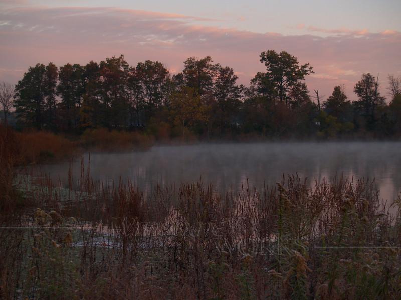 #64 - Heller Road Pond in Dawn Mist