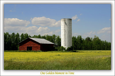 One Golden Moment in Time2