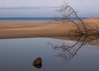 """Morning Reflections"""