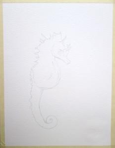 Seahorse Sketch
