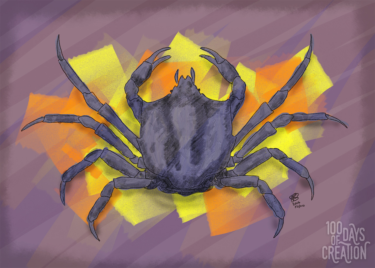 "Day 50 - Crabby ~Digital Painting, 14"" x 10"""