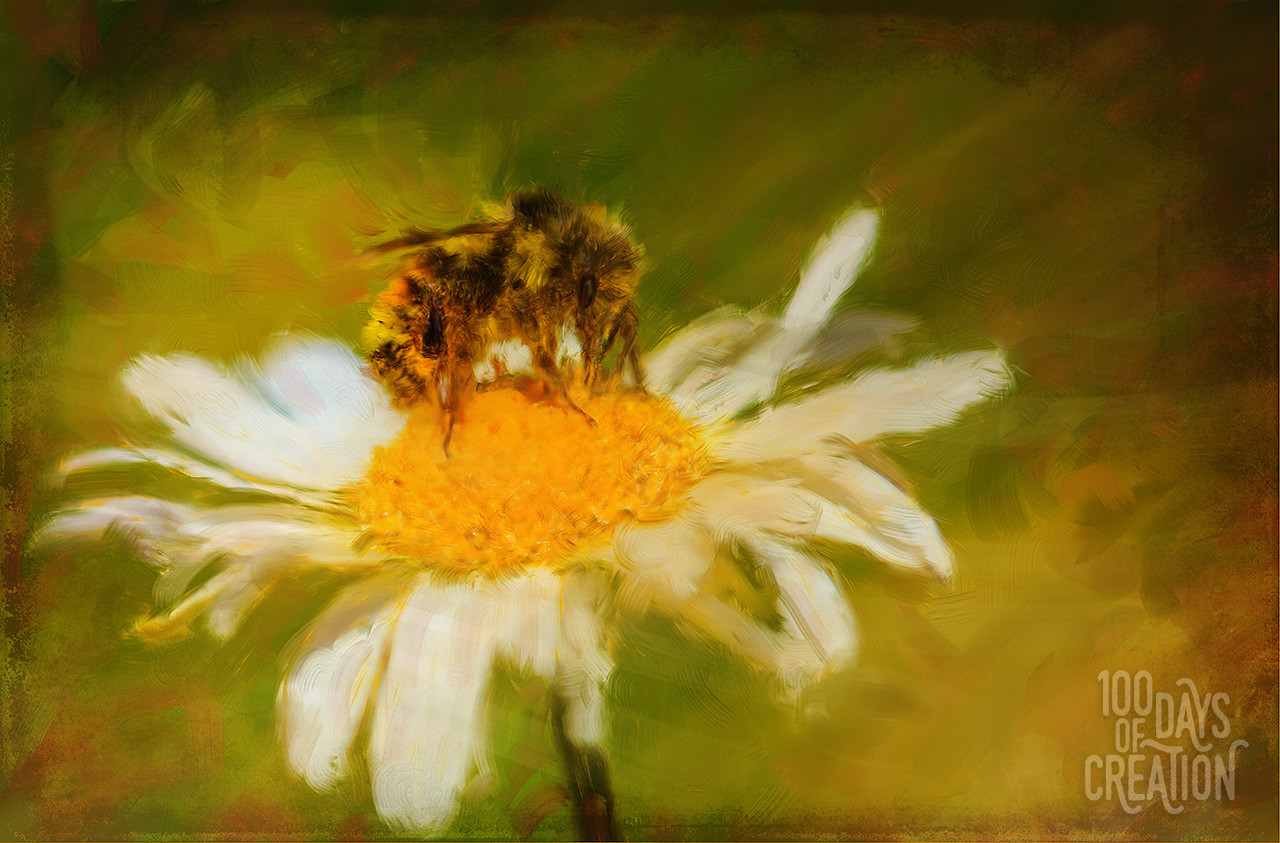 "Day 23 - Beezy ~ Digital painting, 12""x8"""