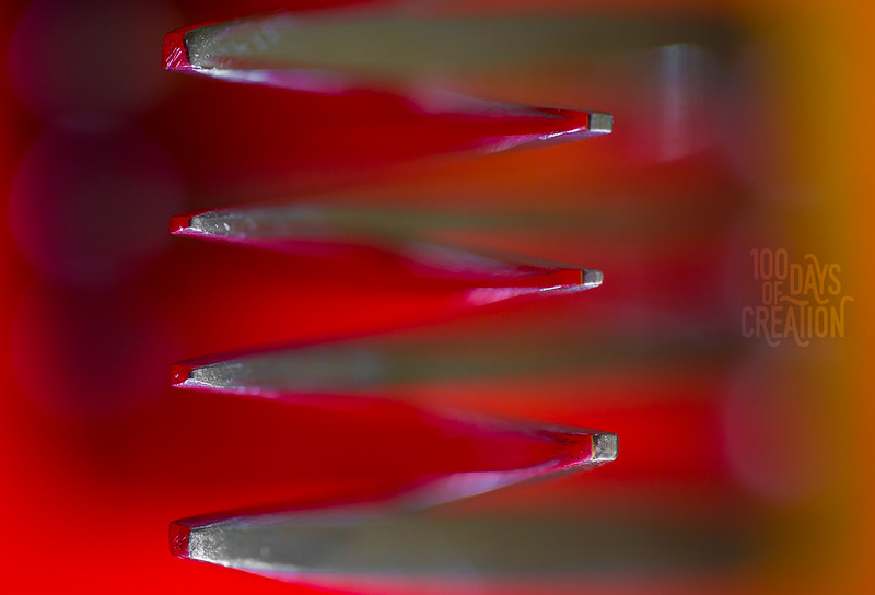 "Day 63 - Merge ~  Macro photograph series E, 12""x8"""