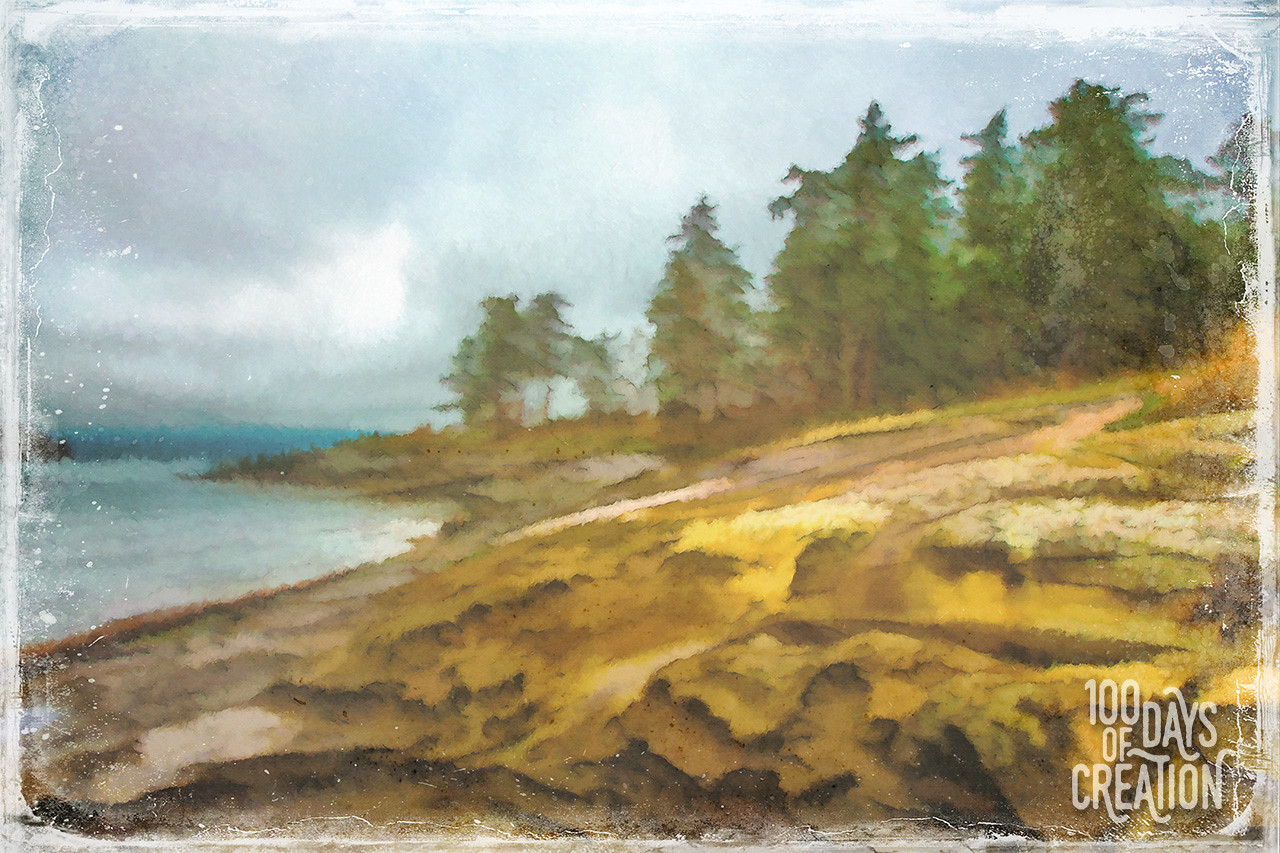 "Day 8 - swept. The sandstone coast of the gulf islands. Digital photo based painting. 13""x20"""