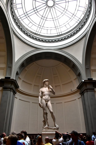 Michelangelo's David,.  The wait was worth all the hype it gets!