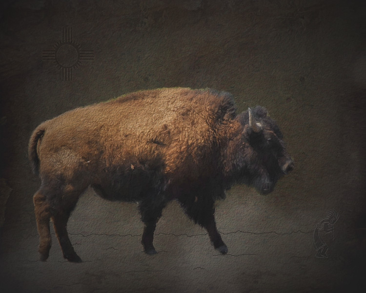 Buffalo Wall Art