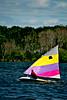 Sailing Sunfish