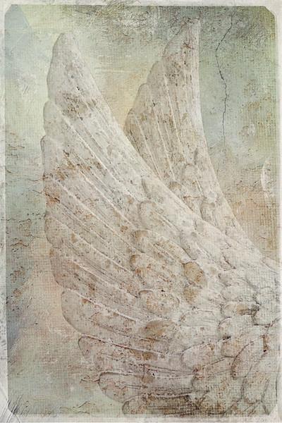 On Angels Wings2
