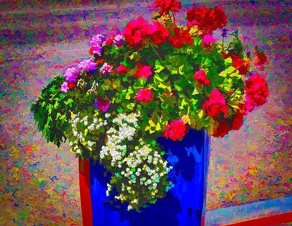 Street Flower Basket