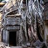 Ta Prohm doorway II